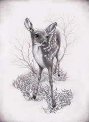 Little Deer by 10lohuis