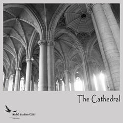The cathedral by superrollino