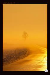 Far away in the fog by superrollino