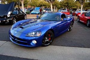 Viper by gbrown37