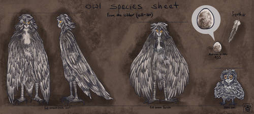 owl species sheet by wickedevilbunny