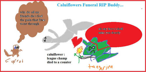 Caluiflower Tribute by mewtwo7778