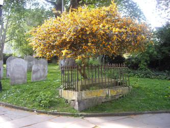 Crowned Grave by NekoXu