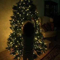 Christmas '09 by arabienne