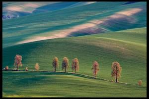 Moravia by KarolP