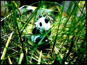 Panda by Marekatt