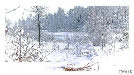 Today - a winter tale by ImagesByDyrek