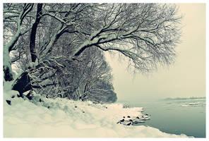 Winter Danube 8 by Csipesz