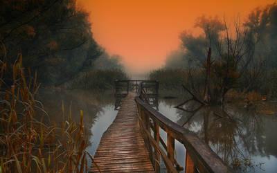 Misty morning 4 by Csipesz