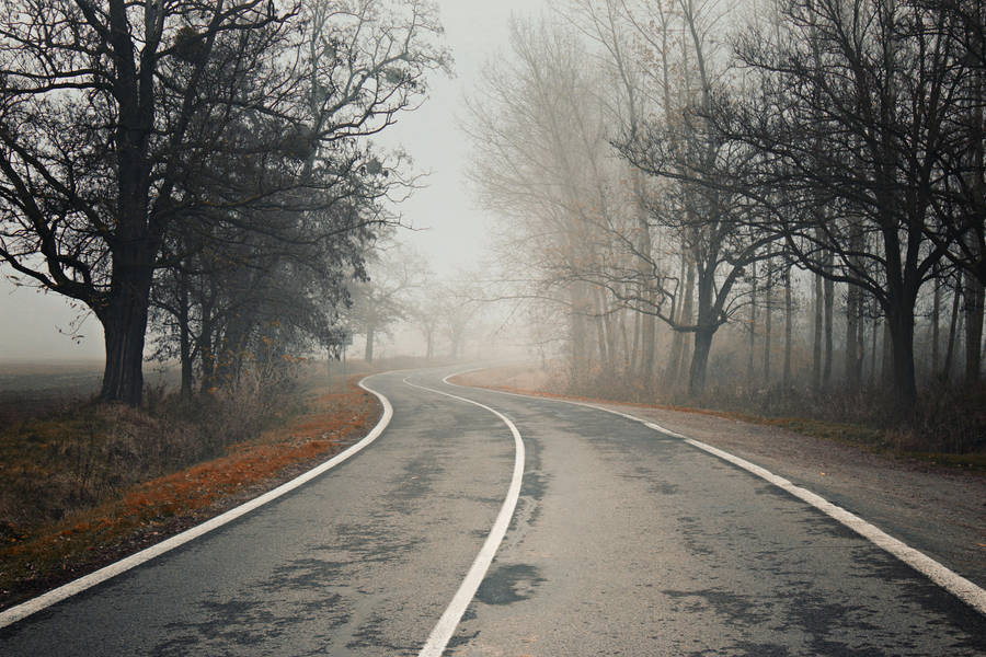 Foggy road by Csipesz