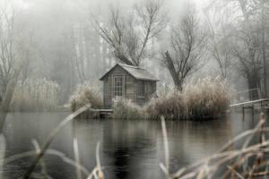 Lakeland 28 by Csipesz