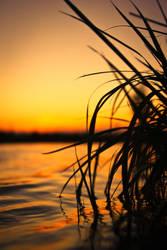 lake_side by tobiasth