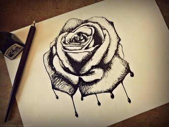 Bleeding Rose by PinkRoseBud