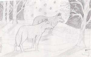 Moonlight Strole by Kiba-Aido