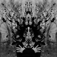 Rorschach by sophiaazhou