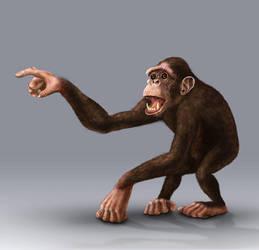 Chimp Color by farneze