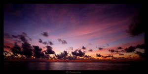 Violet Skies by MarcoHeisler