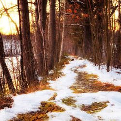 From Autumn To Winter by MarcoHeisler