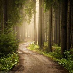 Morning Light by MarcoHeisler