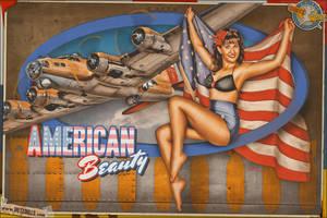 Nose Art Pinup - American Beauty by warbirdphotographer