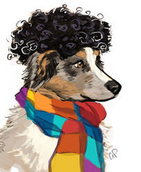 Dogs in Wigs - Vinicius by rocketcica