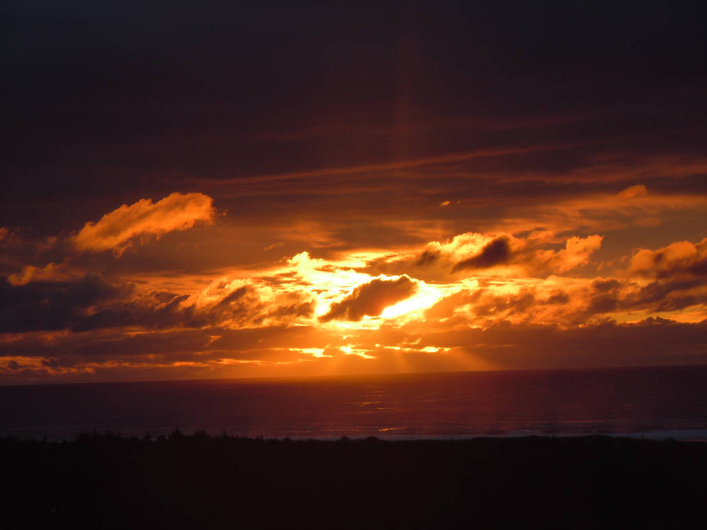 Oregon Sunset by sunnie