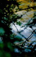 Impressionist Blur by sunnie