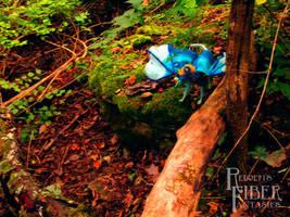 Diverging Path by RRedolfi