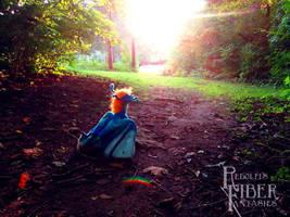Chasing The Golden Hour by RRedolfi