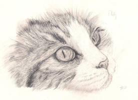 Look at Me: Pencil by Emasone