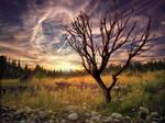 Sunset Digi-Painting by velcrowmistress