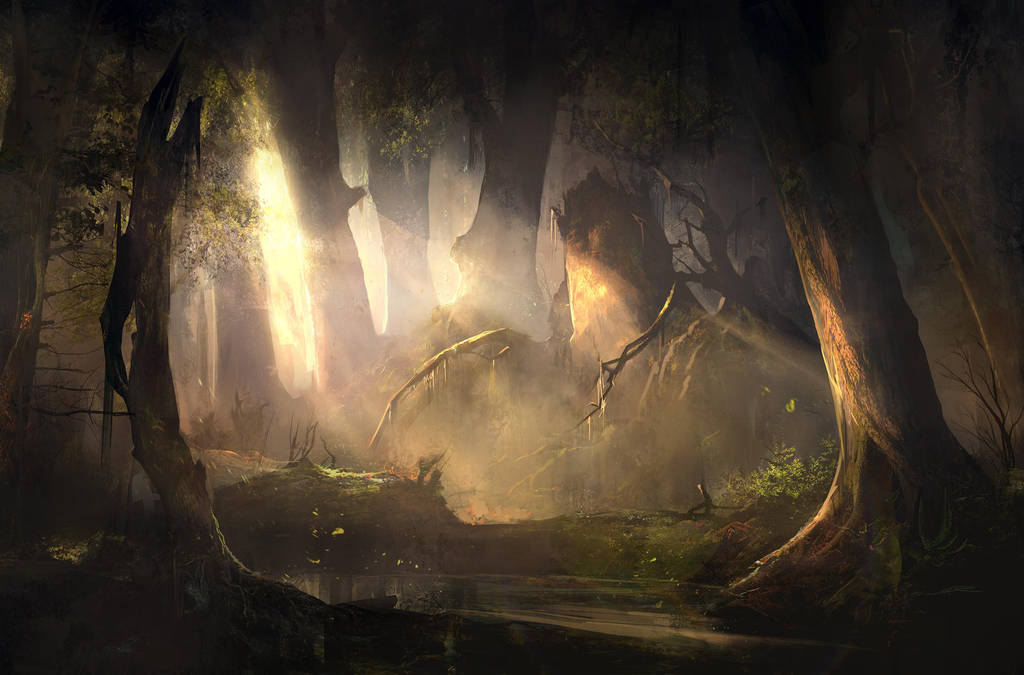Mysterious Forest Sunset by SergeyZabelin