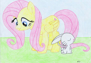 Fluttershy and Angel Bunny by thepine