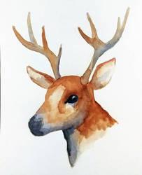 watercolor deer by rjessup
