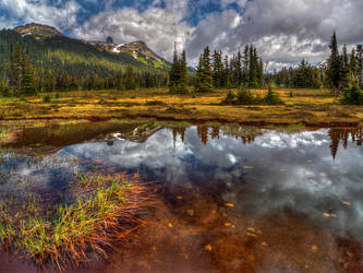 Taylor Meadows by IvanAndreevich