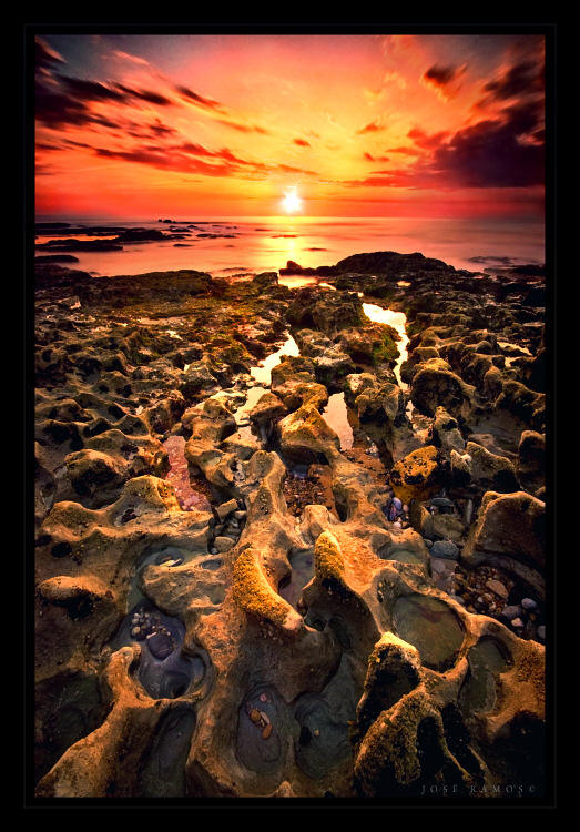 Twilight Footprints by Inebriantia