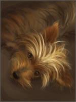 Speedpaint Pup by jezebel