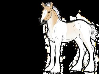 B168 | Foal Design by Nabashta