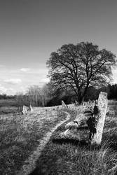 Burial Grounds by iskallvinter