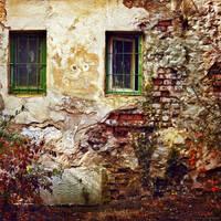 Autumn wall by snbora
