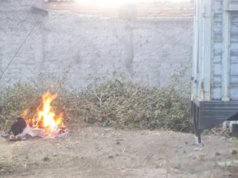 fire by ob-la-di-ob-la-das