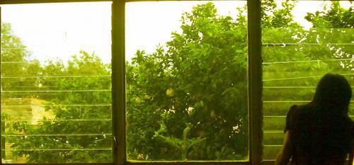 Yellow love by ob-la-di-ob-la-das