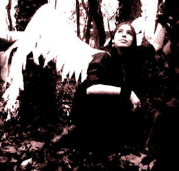 Makeshift Wings 5 by MeccaJingoJingo