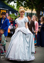 Cinderella by Jeditwins