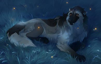 Fireflies by Foxjot