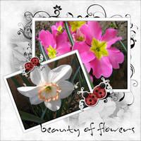 Beauty of flowers by noema-13