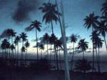 Puerto Rico Dusk by Cresteh