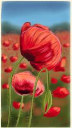 Poppy by PG-Artwork