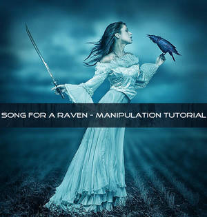 Song For A Raven (Manipulation Tutorial) by UmbraDeNoapte-Stock