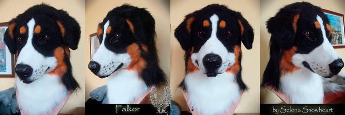 Falkor Berner Sennenhund by SnowVolkolak